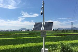 智慧農業監控系統
